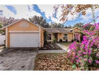View 11513 Almo Ct Clermont FL