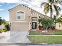 View 823 Hacienda Cir Kissimmee FL