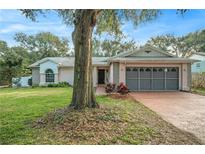 View 15718 Carriage Hill Ct Clermont FL
