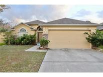 View 5390 Silver Thistle Ln Saint Cloud FL