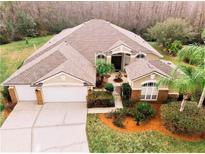 View 14807 Via Winghurst Ct Orlando FL