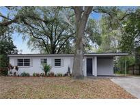 View 4515 Seybold Ave Orlando FL