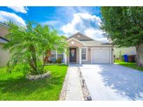 View 2408 Avalon Ct Kissimmee FL