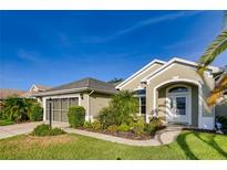 View 27133 Greenfly Orchid Ln Leesburg FL