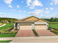 View 29217 Armoyan Blvd Leesburg FL