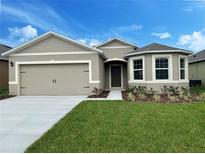View 329 Winged Elm Dr Debary FL