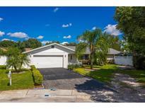 View 10438 Crestridge Ct Orlando FL