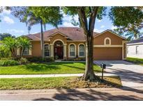 View 10030 Newington Dr Orlando FL