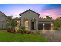 View 9422 Juniper Moss Cir Orlando FL