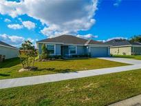 View 7517 Sloewood Dr Leesburg FL