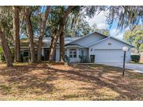View 35219 Haines Creek Rd Leesburg FL