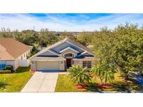 View 2853 Oconnell Dr Kissimmee FL