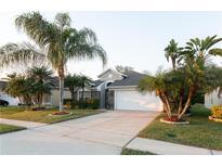 View 3411 Fernwood Dr Kissimmee FL