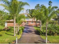 View 14715 Bayonne Rd Orlando FL