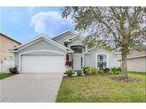 View 2323 Andrews Valley Dr Kissimmee FL