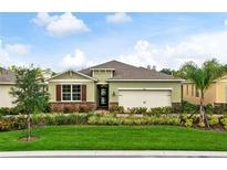 View 3866 W Winged Elm Ct E Clermont FL