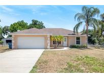 View 317 S Perry Ave Fort Meade FL