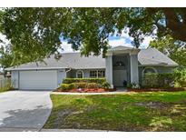 View 5900 Cheswood Ct Orlando FL