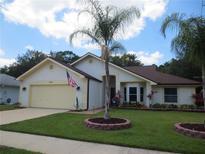 View 11540 Sandy Hill Dr Orlando FL