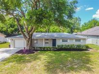View 437 E Citrus St Altamonte Springs FL