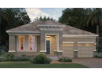 View 16707 Oakboro St Winter Garden FL