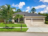 View 3257 Curving Oaks Way Orlando FL