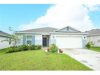 View 16357 Yelloweyed Dr Clermont FL