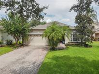 View 6755 Fernridge Dr Orlando FL