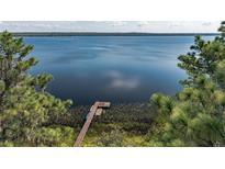 View 19413 Dorr Rd Altoona FL