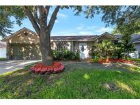 View 11255 Cypress Leaf Dr Orlando FL