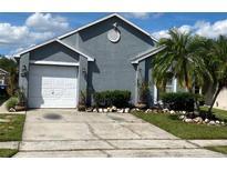 View 11623 Purple Lilac Cir Orlando FL