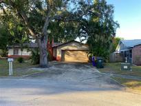 View 2422 Debra Ct Kissimmee FL