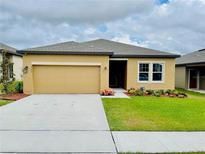View 1131 Lycaste Dr Davenport FL