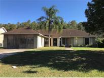 View 228 Red Maple Dr Kissimmee FL