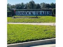 View 4796 Rockvale Dr Kissimmee FL