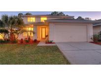 View 2904 Sunset Vista Ct Kissimmee FL
