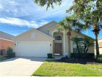 View 8524 Palm Harbour Dr Kissimmee FL