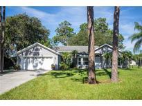 View 6331 Oak Shore Dr Saint Cloud FL