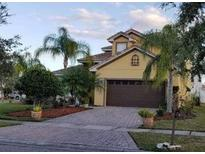 View 2900 Westview Ct Kissimmee FL