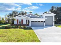 View 8096 Cherrystone St Leesburg FL