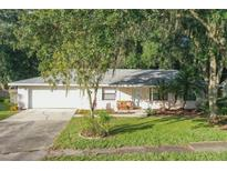 View 3694 Opal Dr Mulberry FL