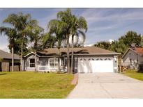 View 803 Blanc Ct Kissimmee FL