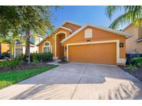 View 588 Orange Cosmos Blvd Davenport FL