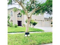 View 5289 Sunset Canyon Dr Kissimmee FL