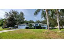 View 1309 Winding Oaks Way Minneola FL