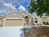 View 319 Sahalli Ct Davenport FL