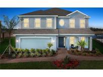 View 833 Golden Elm Dr Ocoee FL