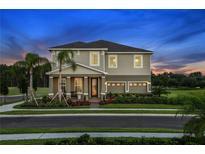 View 7011 Kiwano Way Windermere FL