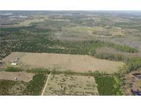 View 8719 Turkey Oak Ln Clermont FL