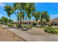View 18675 N Palomar Dr Sun City West AZ